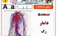 دانلود رایگان ۱۰ فیلم کاربردی آموزش زبان ترکی آذری که باید ببینید